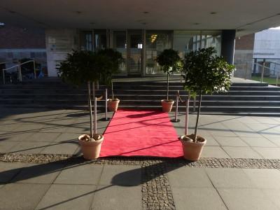 Mysteriös: Roter Teppich vor der Logopädieschule im Kieler Schloss