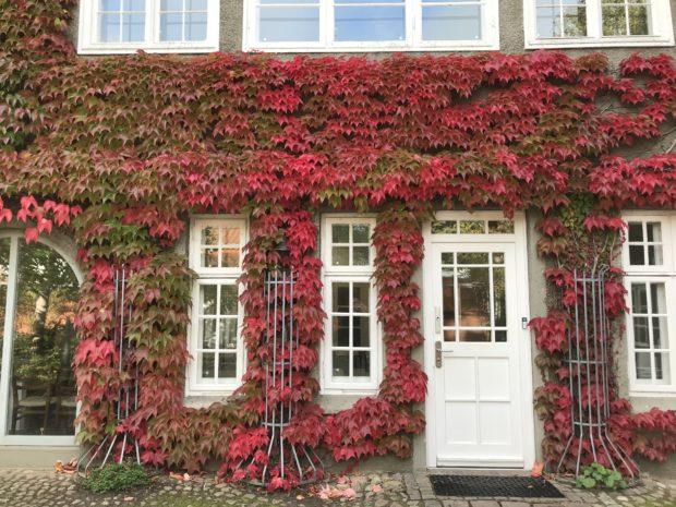 Herbst-Haiku